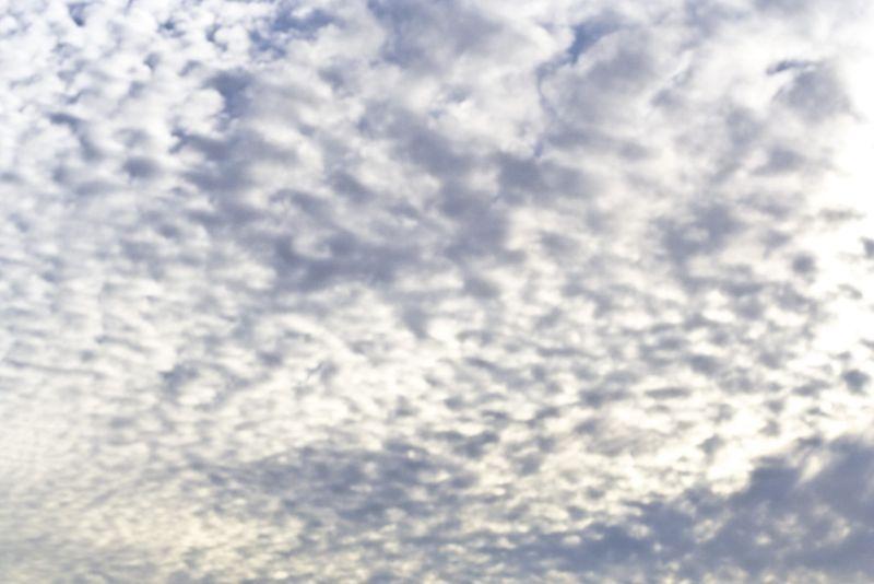 Sky _ web