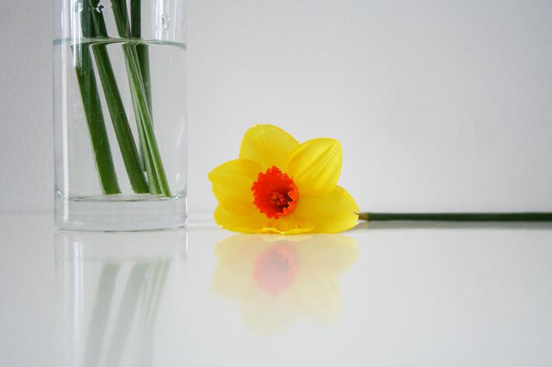 Spring_2_3